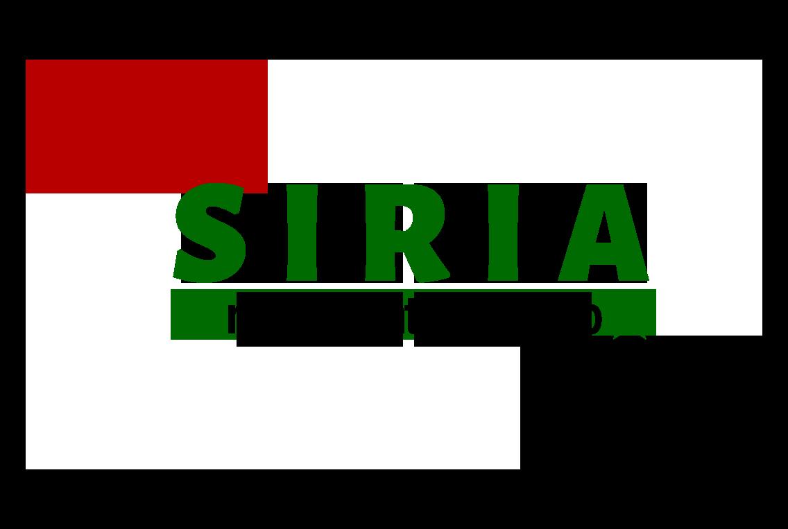 Apoyo a Siria